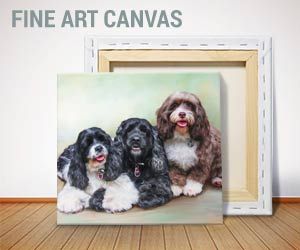 Photo to Oil Painting Pets