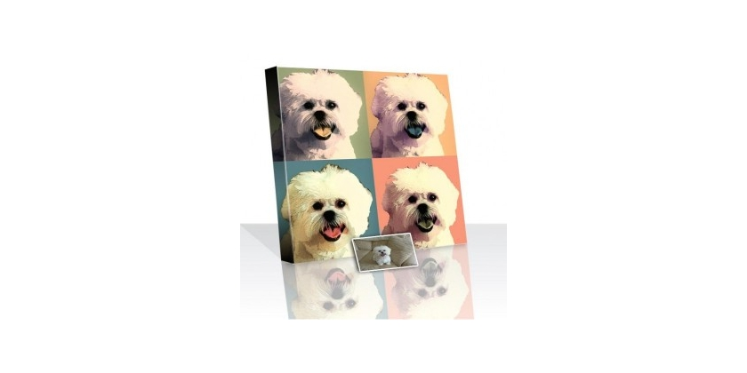 Captured Moment of your Pet – From Photo into Painting Idea
